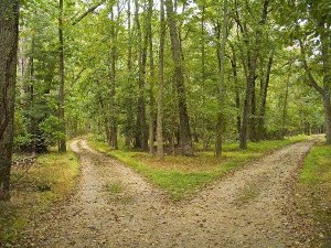 Proverbs 10 Which Path Do You Choose 2roads