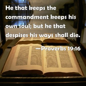 Proverbs 19 16 He who keeps the commandments
