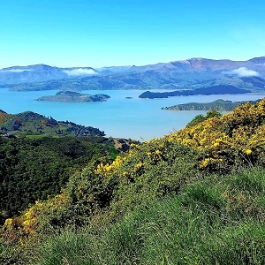 One of the 10 best hikes in New Zealand, Diamond Point.