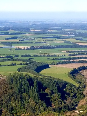 A view of farmland from one of the 10 best hikes in New Zealand.
