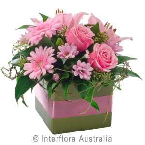 MINI BOX PINK PETITE MINI BOX OF MIXED FLOWERS AUS342