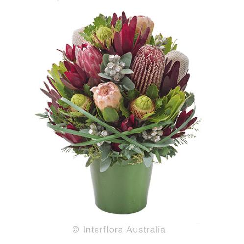 Bush Blooms Australian Natives