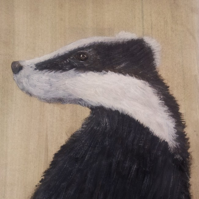 Portrait of a Badger