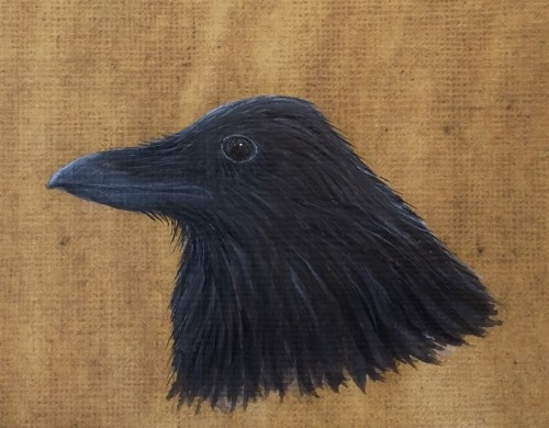 Portrait of a Raven (Ordered Living)