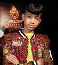Willow-11