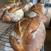 Biologisch spelt desem brood