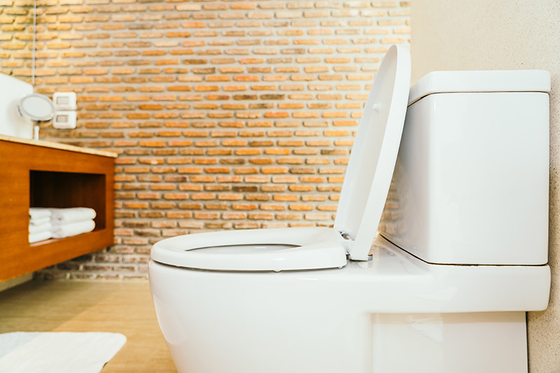 Quel WC Grohe choisir ?