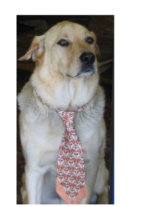 Proud dog on duty, wearing a tie.