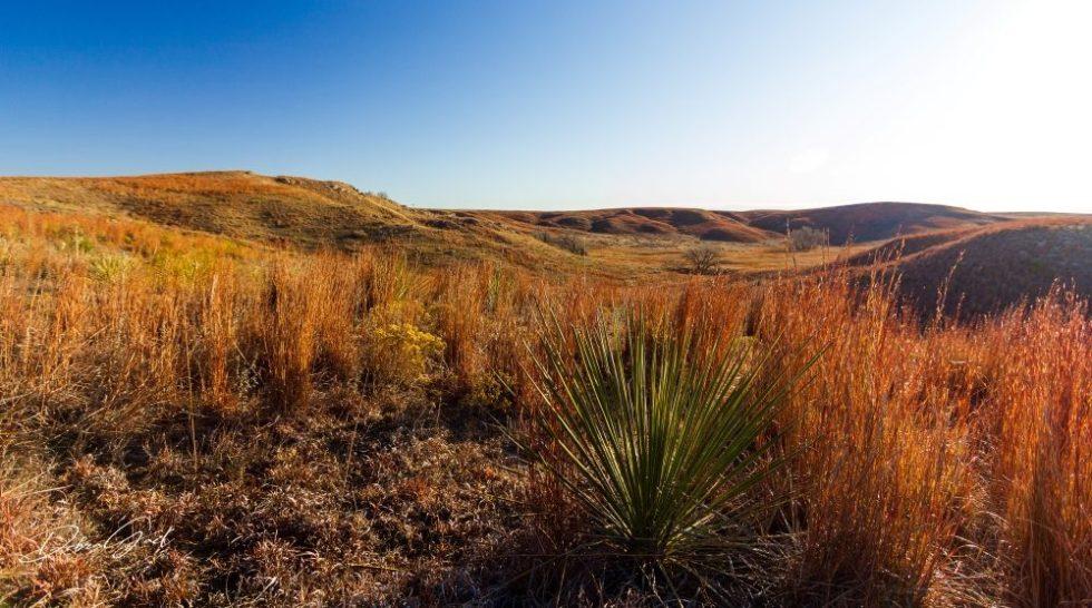 high plains photography debra gail
