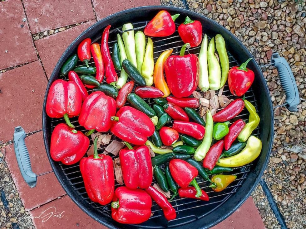 grilled peppers vegetable garden