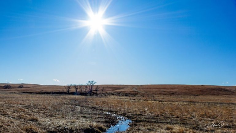 a light exists in spring sunshine blue sky field early spring debra gail photography
