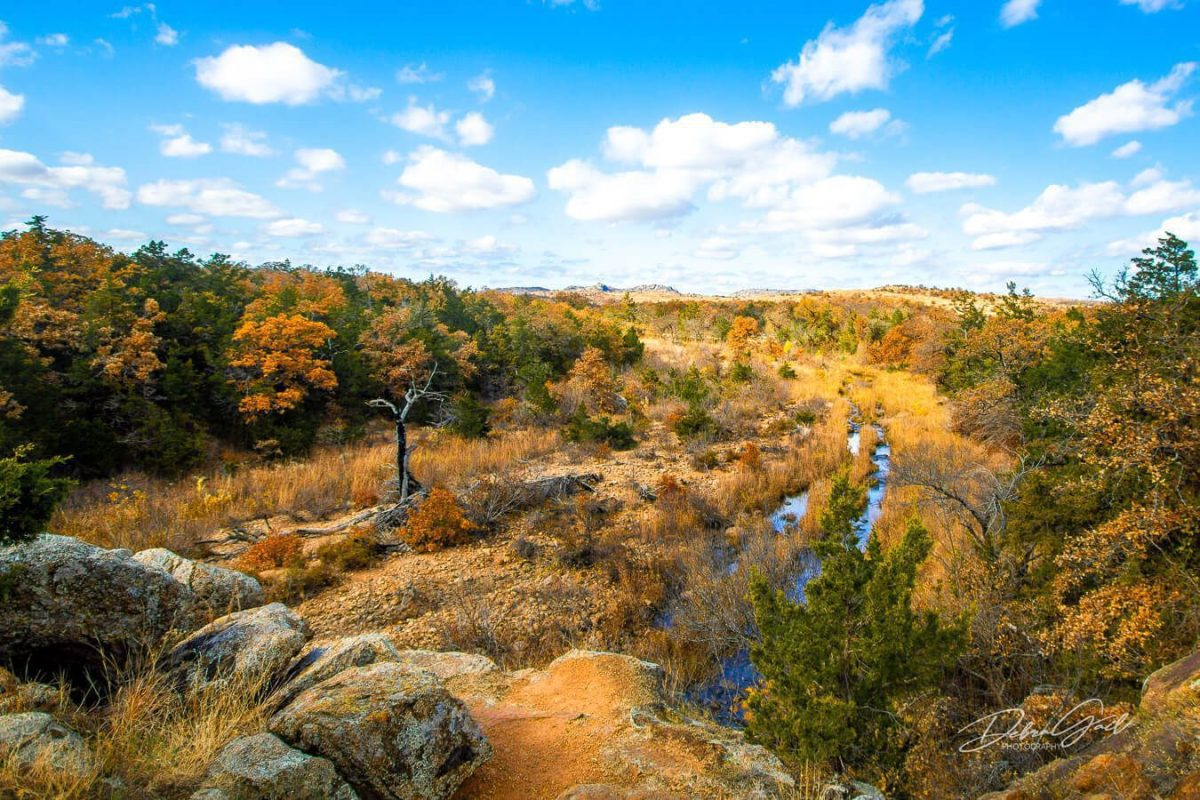 Nature First Debra Gail picture of Wichita Mountains Wildlife Refuge