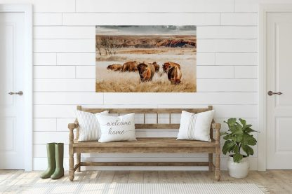 Bison Herd 10783 interior image