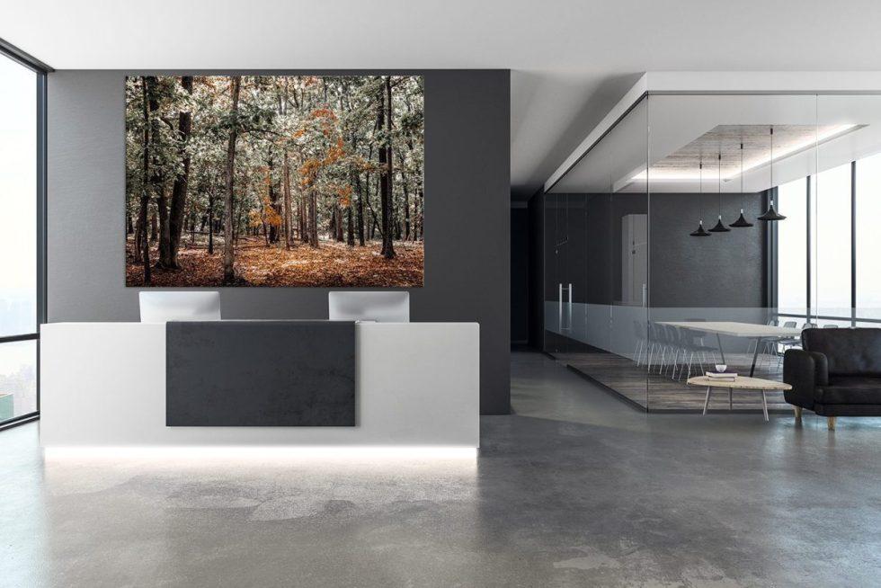 interior designers office decor autumn trees