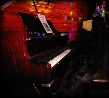 Bear playing piano