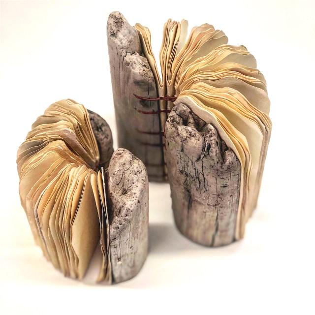 Driftwood 9