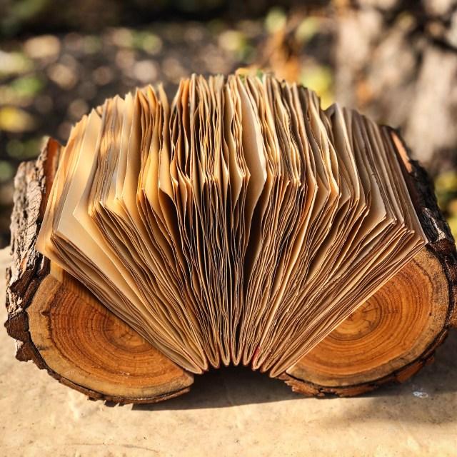 log book 5