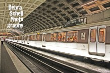Washington DC 31 WEB