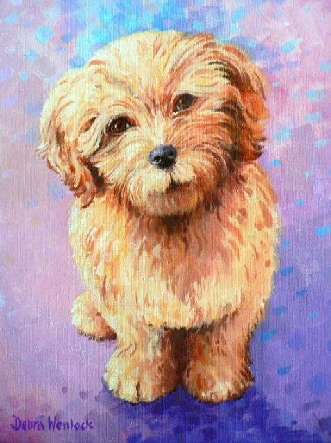 Cockerpoo acrylic painting by Debra Wenlock