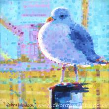 Steven Seagull Card by Debra Wenlock
