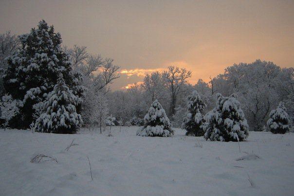 SnowyMorningSunriseRun