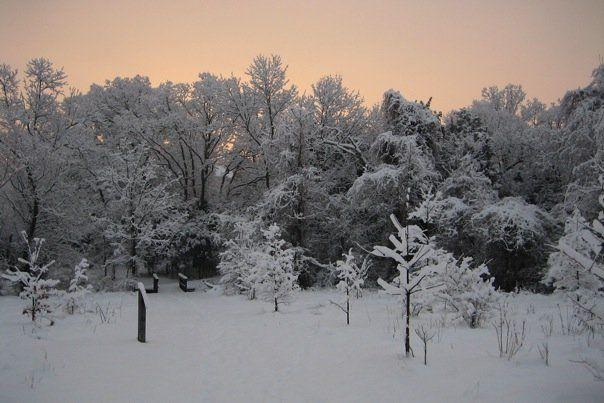 SnowyRun