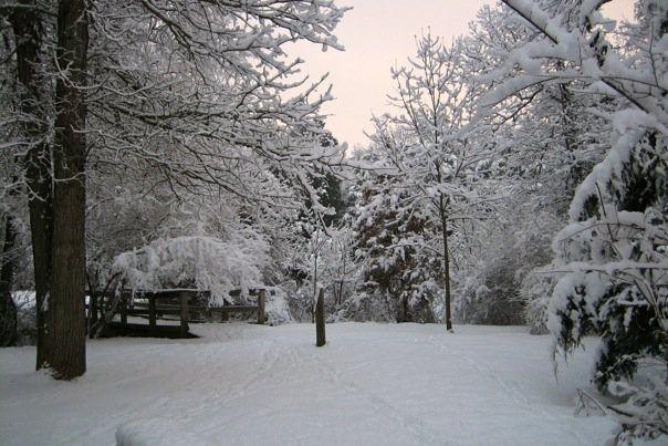 SnowyRunBridge