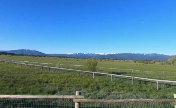 Grand Teton Half