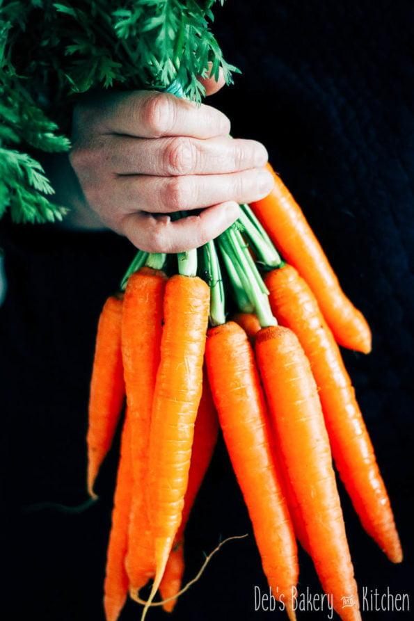 alles over wortels