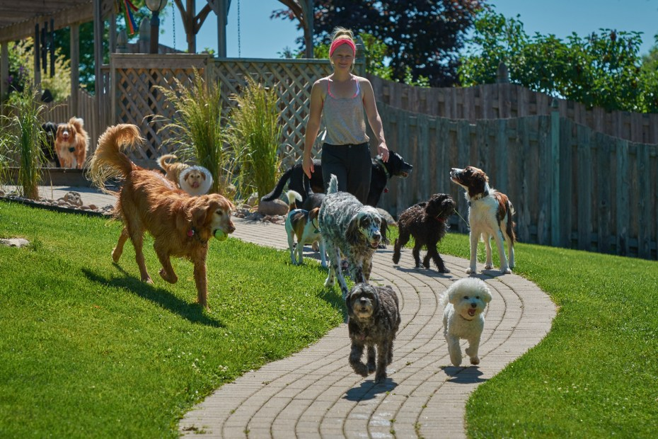 Head Nanny Amanda with Dogs at the Dogwoods Mount Horeb WI
