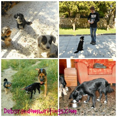 Two Months With Flossie…