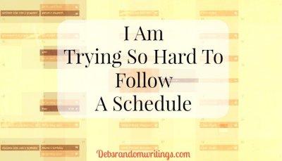 follow a schedule