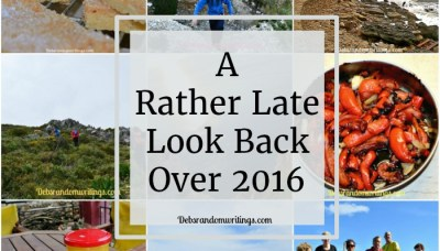 My Rather Late Look Back Over 2016