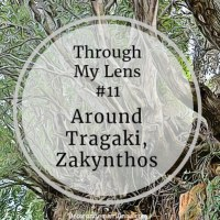 A Walk Around Tragaki, Zakynthos - Through My Lens