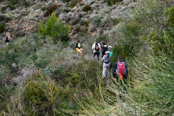 Sticking together as a group we work our way along the overgrown trail.