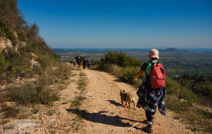 The Zakynthos walking group followed the trail around the mini-mountain rather than up it!