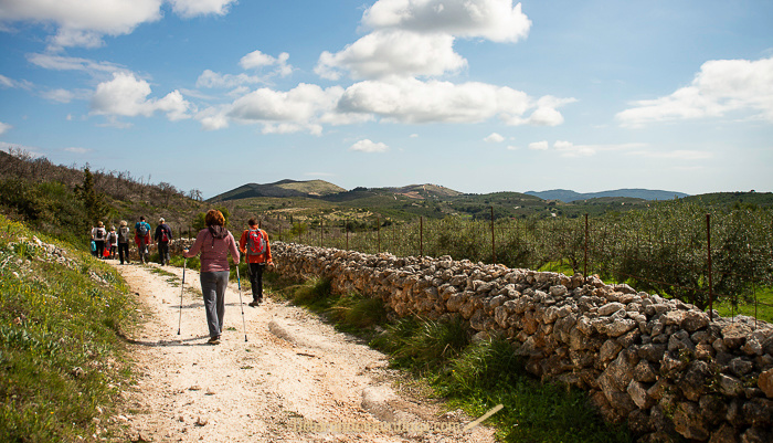 Hikers on Zakynthos walking towards green hills under a blue sky with clouds.