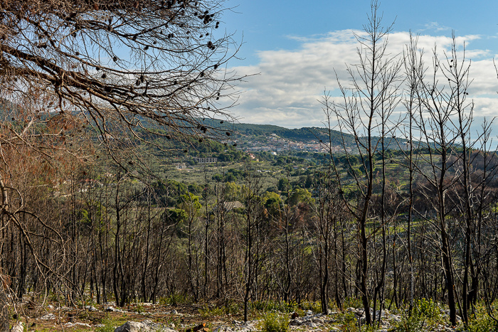 Keri village in view through some trees when hiking the hills above Keri Lakes.