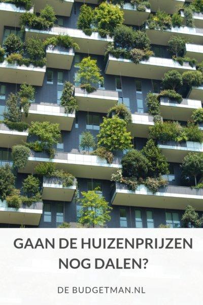 Gaan de huizenprijzen nog dalen?; DeBudgetman.nl