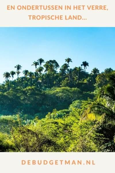En ondertussen in het verre, tropische land #emigreren #Reizen #DeBudgetman