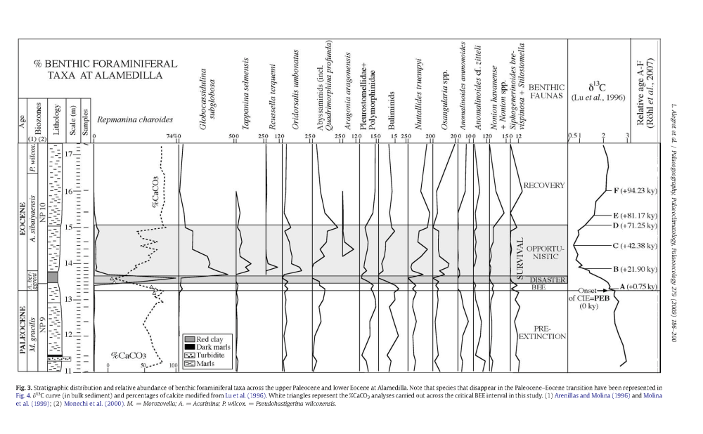 medium resolution of fig 3 from extinction and recovery of benthic foraminifera across the paleocene eocene