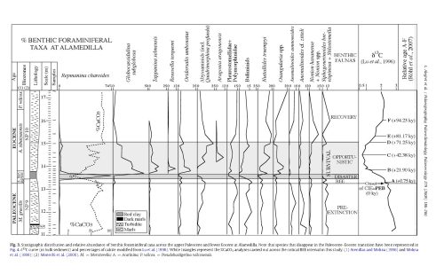 small resolution of fig 3 from extinction and recovery of benthic foraminifera across the paleocene eocene