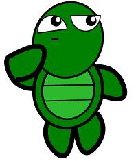 turtlethinking
