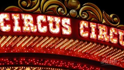festa circo ou circense