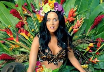 Katy Perry clipes inspiram temas