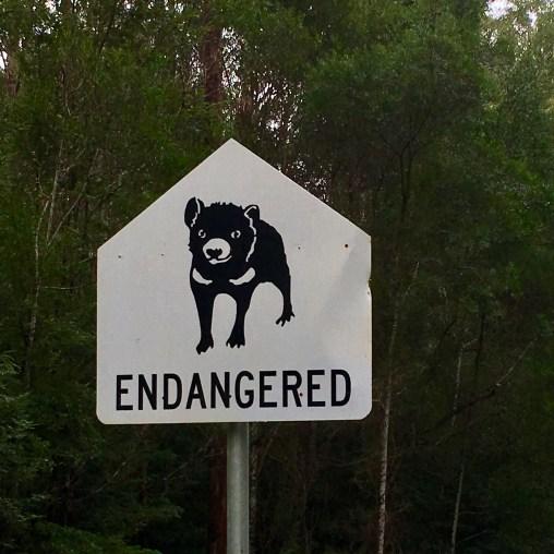 Tasmanian Devil sign