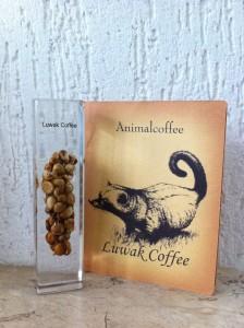 imagem de uma amostra do café especial kopiluwak dentro de um retangulo de resina, com um desenho do civeta ao lado.
