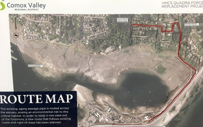 Quadra sewer project upsets citizens at public meeting
