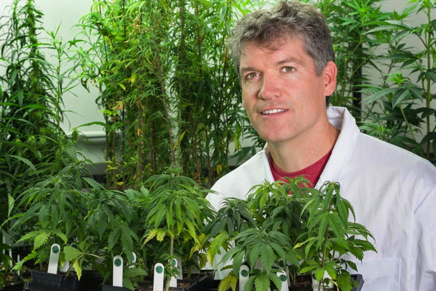 Vanier grad Jonathan Page, now Canada's leading pot doc, builds cannabis hub in Comox