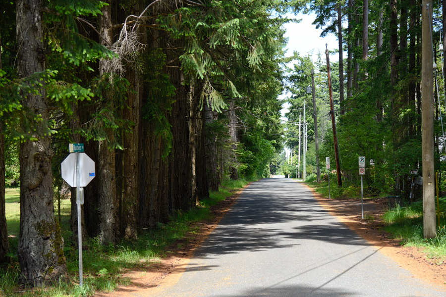 A new Courtenay strategy will guide how the city manages its urban forests